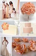 Peach IB