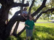FORT RICHARD-TX STATE PARK