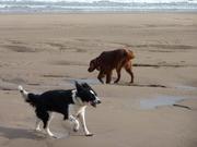 Beach September 2011