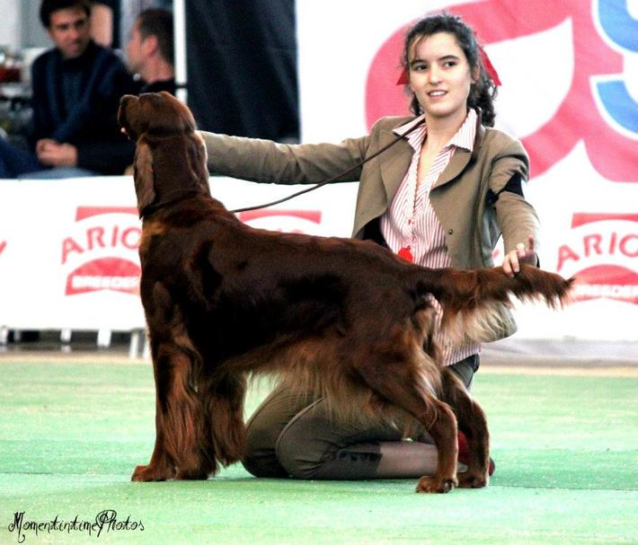 RULA VIGO 2012-2