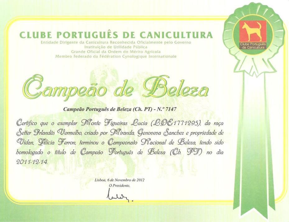 PORTUGAL CHAMPIONSHIP CERTIFICATE