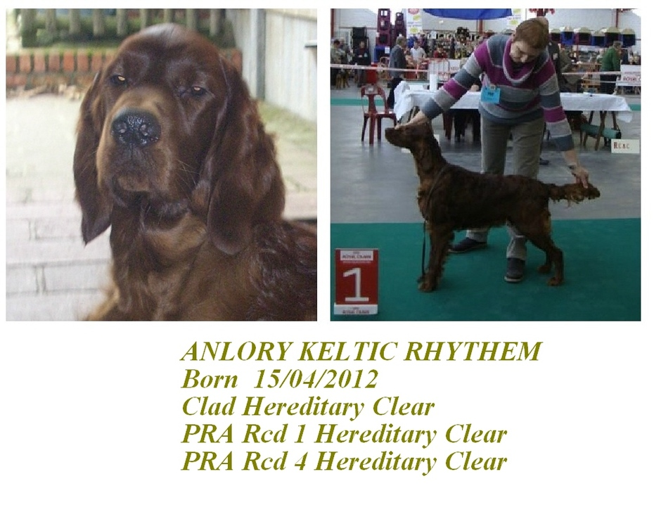 Anlory Keltic Rhythem