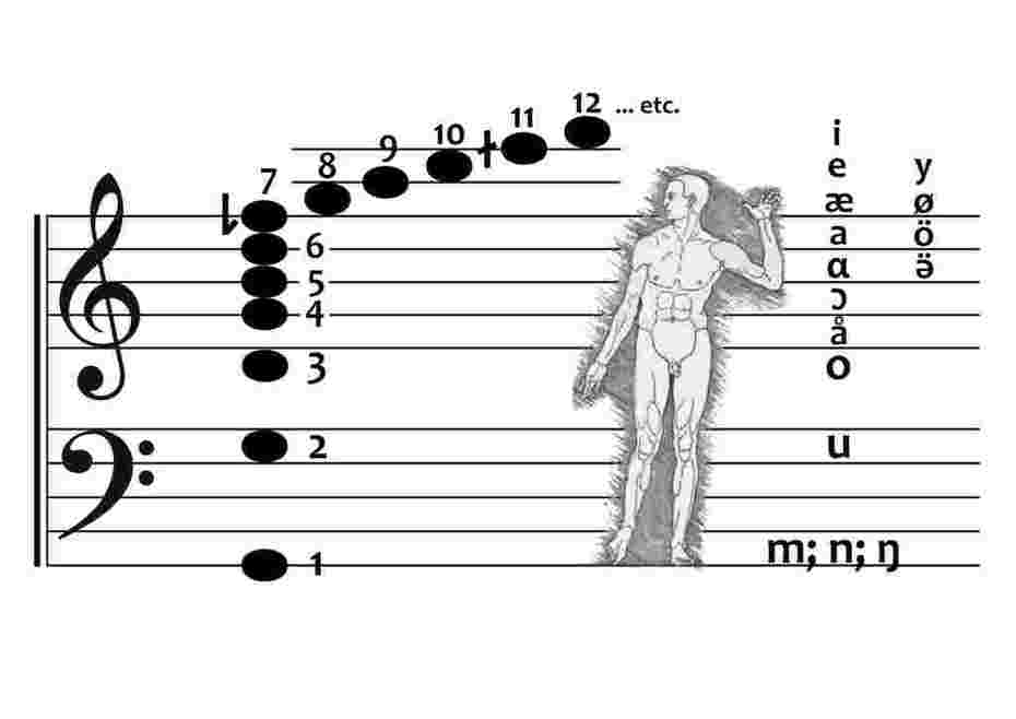 The harmonic series - represented by note and number - human anatomy - illustrated by Albrecht Dürer