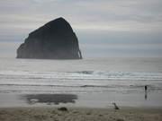 Oregon Coast in the Winter
