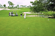 Golf Grand Bavaro