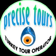 Precise Tours Logo