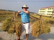 Vietnam Travel with Vivutravel