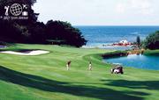 Bintan Island Golf Tours & Bintan Island Golf Holidays