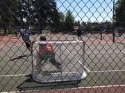 streethockeygoal