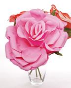4093_020409_largeflower_l