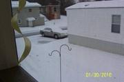 First SnowFall 2010-5