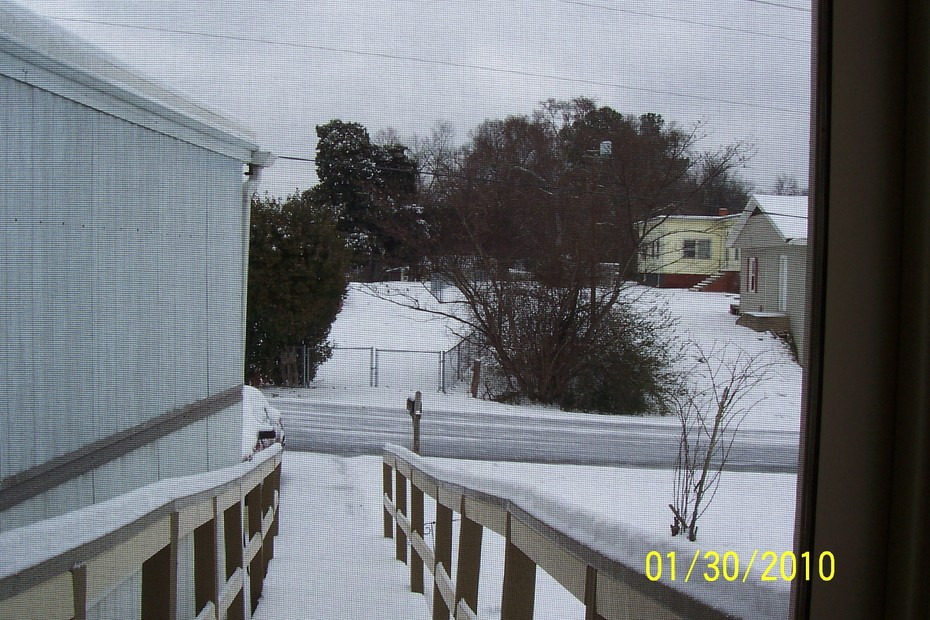 First SnowFall 2010-6