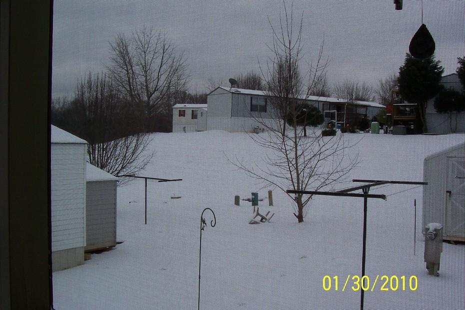 First SnowFall 2010-2