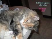 lil  girl...daddy's girl 9 18 2010
