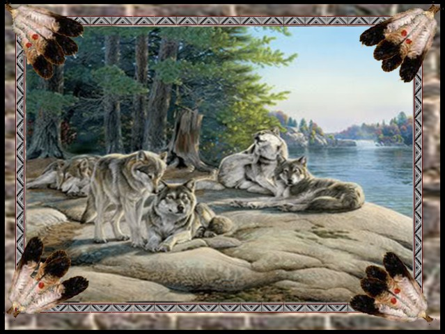 WOLVES ON ROCK