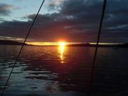 8 Sun Up Lime Bay