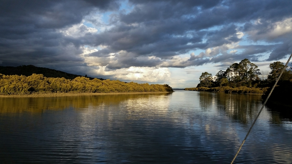 God rays kiss the mangroves of the big muddy creek