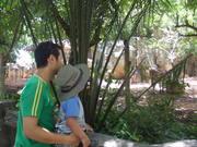 @ the zoo in June 2010