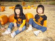 Halloween,2010