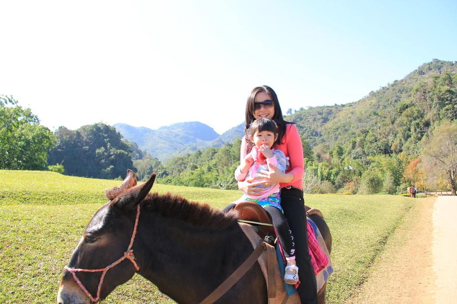 ม้า...ขุนเขา...เราสองคน :P
