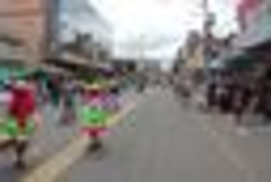 Desfile de la Alegria 2014