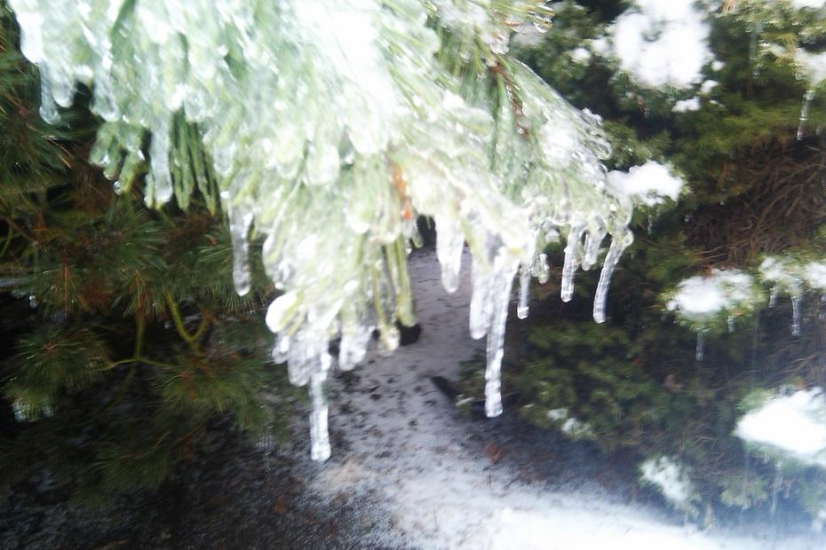 Ice Storm 003