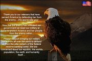 happy veterans day.. an eagle with a message of truth