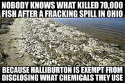 halliburton frakers