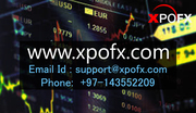 How to Online Forex Trading in India | Xpofx