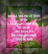 the eye of YHVH