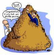 needle_in_the_haystack