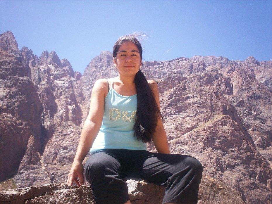 Codillera de los Andes- lado Argentino
