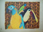 birds in a basket colored pencil