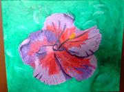 hibiscus edited