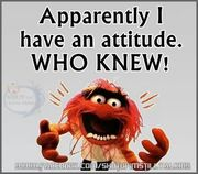 i have an attitude          who new