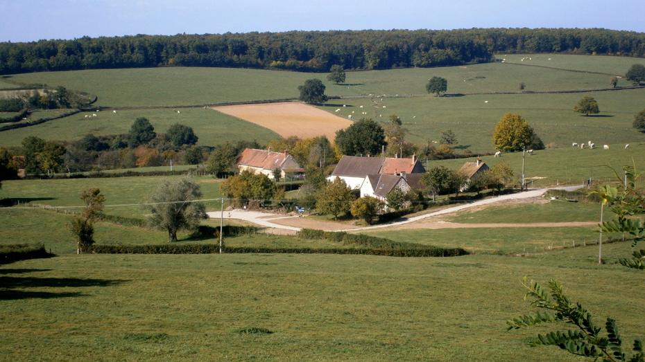 Boschman & Verschure en France