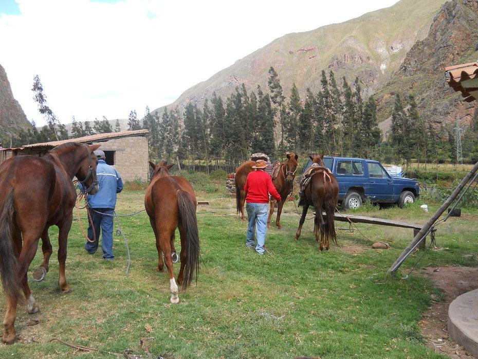 2012 Peru Day 7 Ollantaytambo (123)