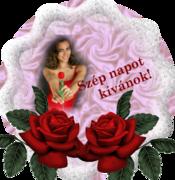 www.tvn.hu_d1fcc574cbe712ca5ab0894ae535b798[1]