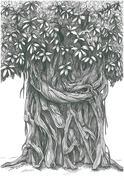 The President's Tree