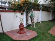 India 2011 085