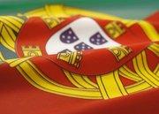 Setters em Portugues