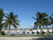 Florida's Navy Moms