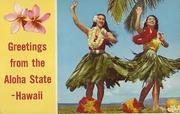 Hawaii Wives.