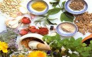 Herbs, Plants, and Spices for your Health