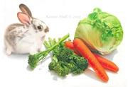 Bunny Banquet