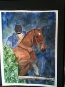 hunter-jumper horse 002