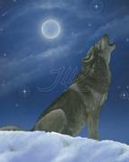 Jesse's wolf800JLK