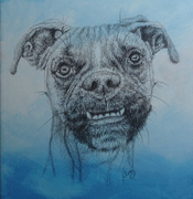 Fine Art Instruction Dog