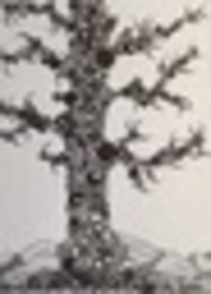Bubble Tree2