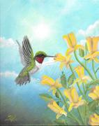 Ruby Throated HummingbirdJLK800